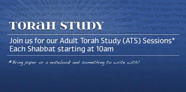 Adult Torah Study